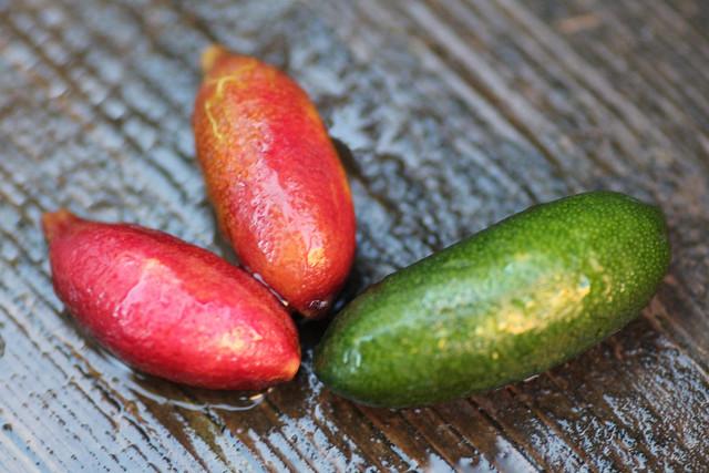 Finger Limes
