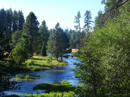 Metolius Headwaters