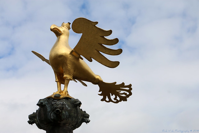 Eagle on top of the fountain, market place - Goslar