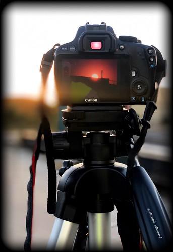 Avance de la secion de fotos a la luna de sangre 2018 #ecliselunar #lunaroja #lunadefuego #fotosmovil #iphonex #pintofotografias