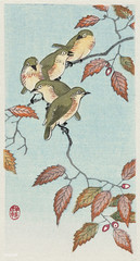Birds on a branch (1900 - 1936) by Ohara Koson (1877-1945). Original from the Rijks Museum. Digitally enhanced by rawpixel.