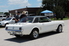 Palmer - 1966 Ford Mustang Coupe