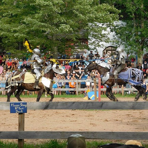 To battle! #jousting #sterlingrenaissancefestival #renfest #renfaire