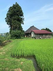 Iwate July 2018