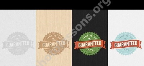 1393083966_guaranteed_psd_badge