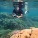 Snorkeller © Charles Anderson