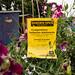 Scotland's Gardens Craigintinney Telferton July 2018 -187