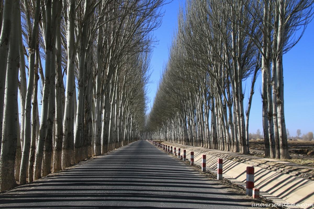China Travel Desert_042