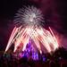 20180703 WDW MK July 4th Fireworks-18.jpg