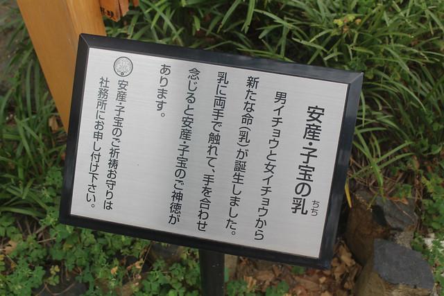kawagoehachiman-gosyuin010