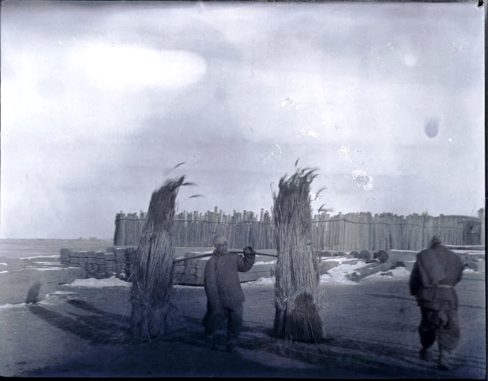 19. Маньчжурия. Инку. Кули с бамбуком