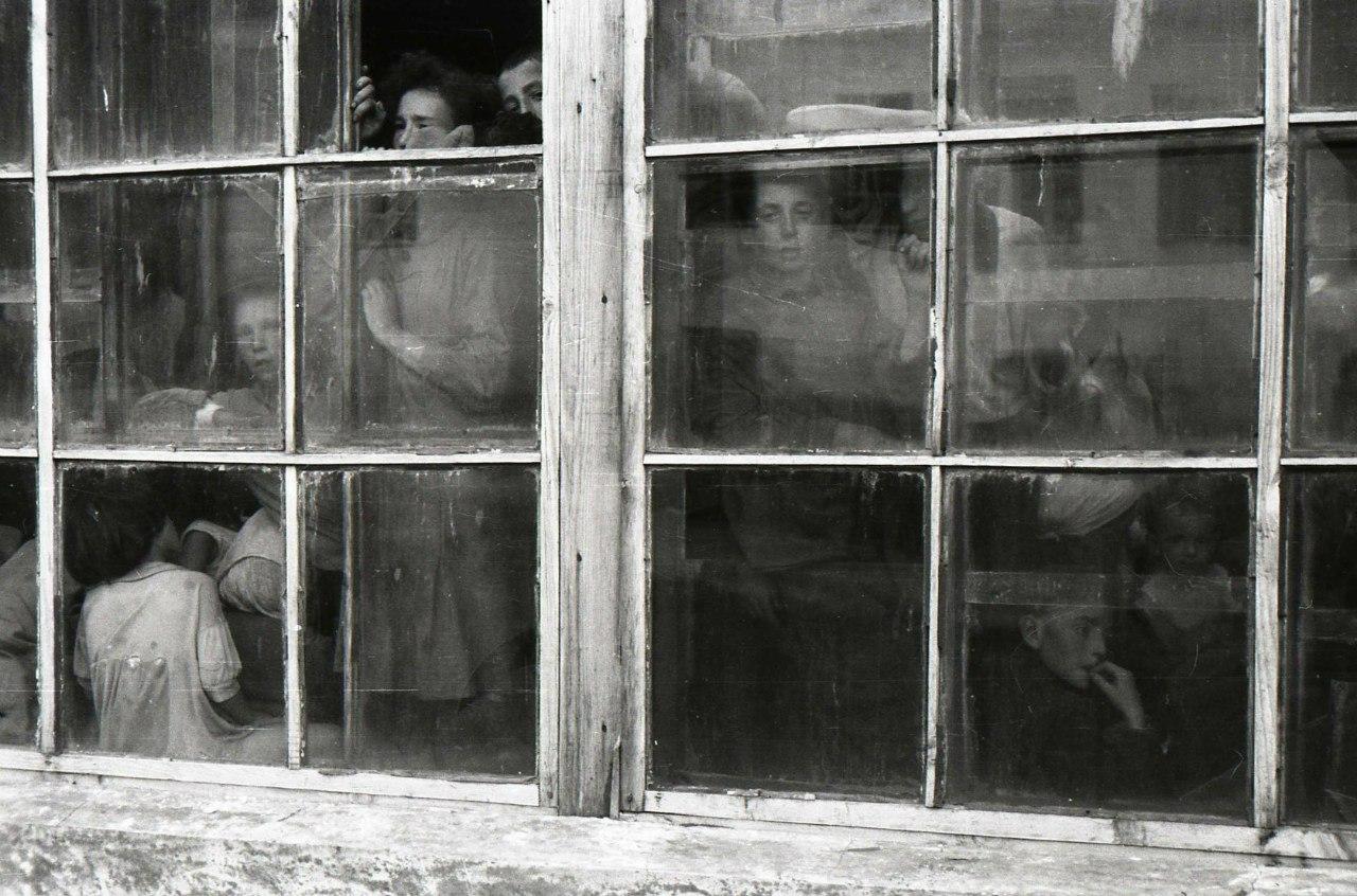 1941. Еврейские, польские и украинские женщины и дети, запертые в теплице в ожидании своей участи. Новоград-Волынск
