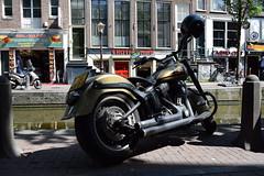 Harley-Davidson Softtail?