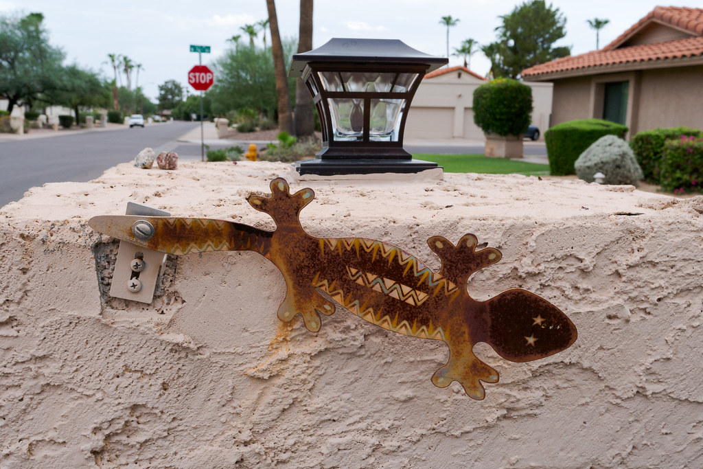 An artistic rendering of a lizard serves as a mailbox flag in the Buenavante neighborhood of Scottsdale, Arizona