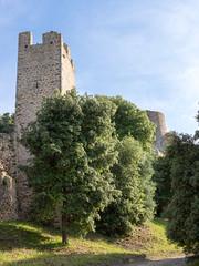 09844 Château Saint-Bernard (Hyères) - Photo of Hyères