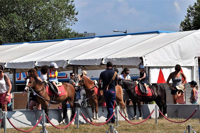 Cicus Knie Zoo riding ponies 07.08.2018