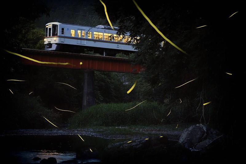 Hotaru-Train 2018