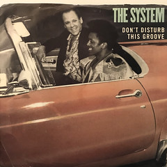 THE SYSTEM:DON'T DISTURB THIS GROOVE(JACKET A)