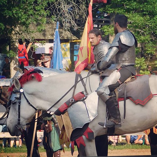 Knights await melee, fisticuffs, tomfoolery, and roughhousing. #sterlingrenaissancefestival #renfest #renfaire