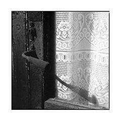 the old curtain • arnay, burgundy • 2017