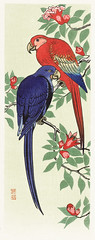 Red and a blue parrot (1925 - 1936) by Ohara Koson (1877-1945). Original from the Rijks Museum. Digitally enhanced by rawpixel.