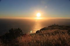 Madeira 2014 - 17.Tag, Faja da Ovelha, Levada Nova, Ponta da Pargo