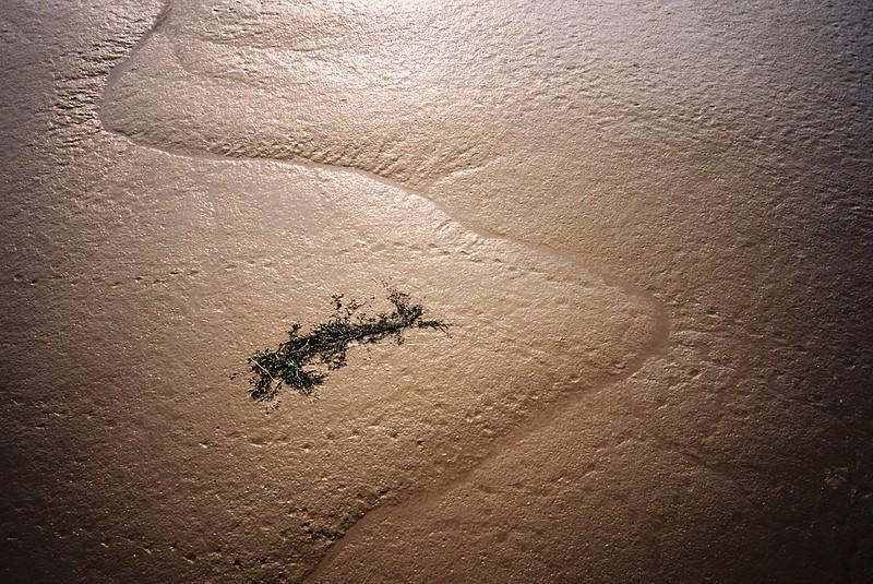 Avon mud textures