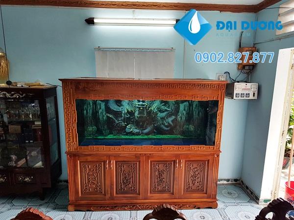 Hồ cá rồng 4 đáy tại Bình Phước