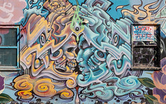 California - San Francisco - Mission District Wall Art 2018