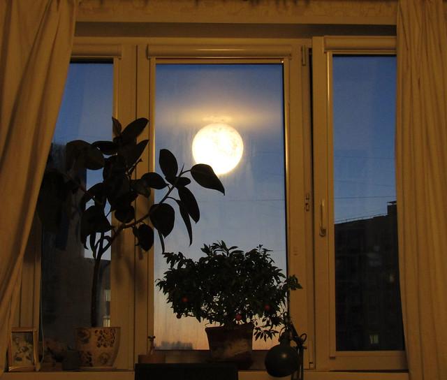 луна в Свиблово