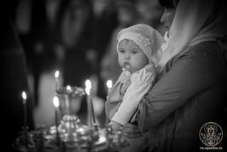Покровский собор 185