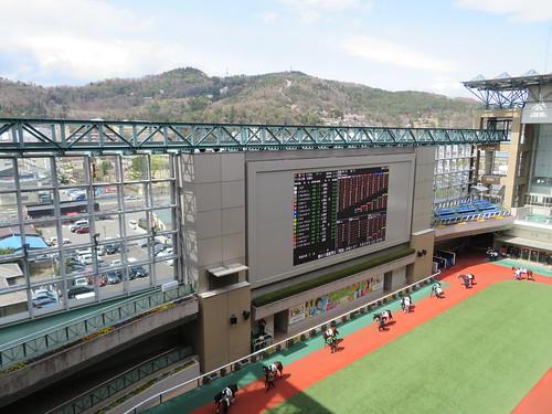 福島競馬場のパドックから眺める信夫山