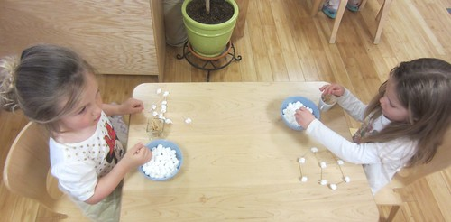 What can you build with marshmallows and toothpicks?