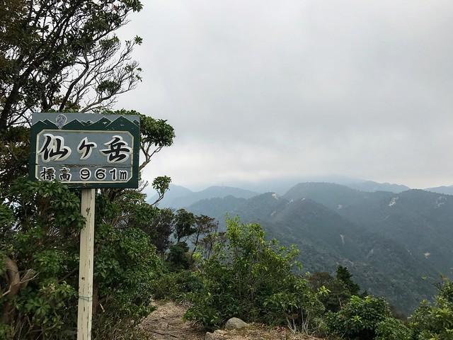 仙ヶ岳 山頂標識
