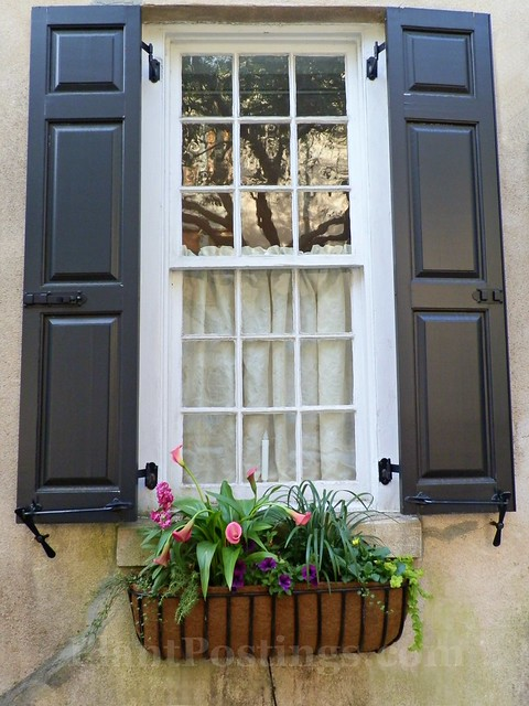 window box 7