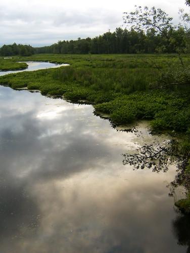 Ox Creek, NY (2009)