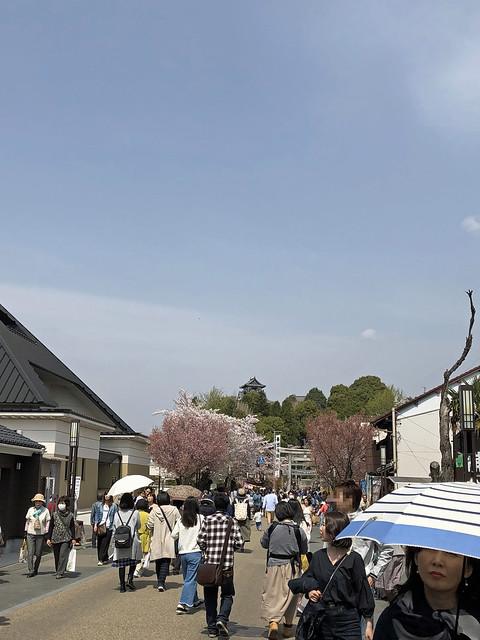 城下町から犬山城天守閣を眺める IMG_0248_2