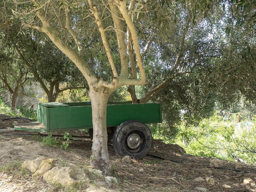 Ta'Mena Estate Gozo