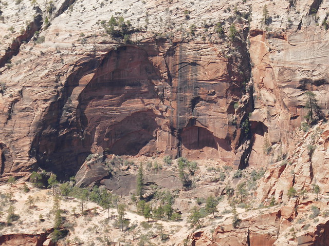 Rock wall formations Zion National Park