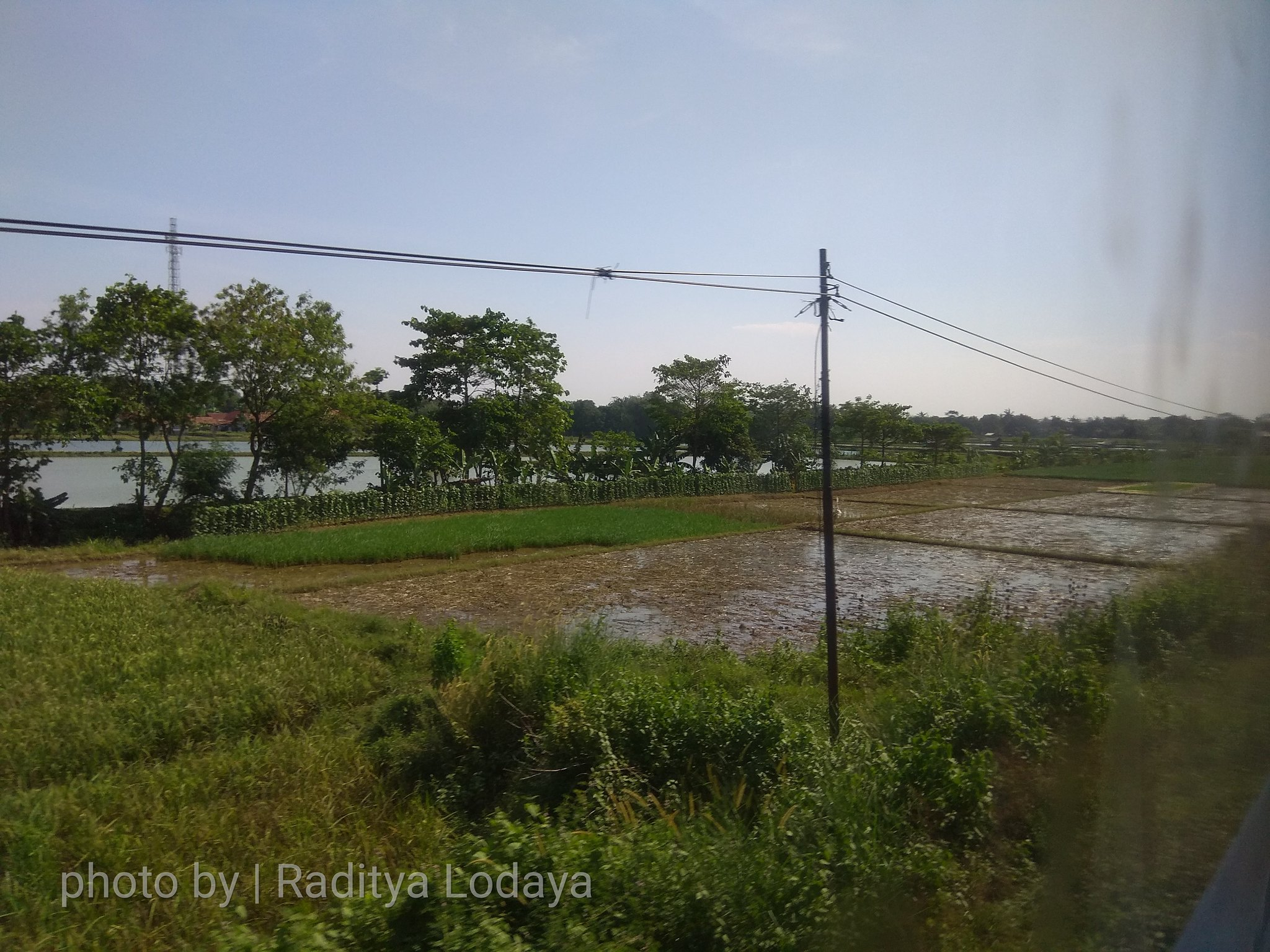 11 TRIP REPORT KERETA API JAYABAYA 1 (JAKARTA-CIREBON) -- KABUPATEN SUBANG 3
