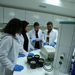 Moleküler Biyoloji ve Genetik Laboratuvarı 3
