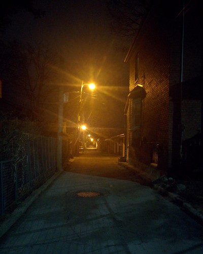 Looking south, Perly Family Lane #toronto #seatonvillage #perlyfamilyln #night #alley #laneway #lights #latergram