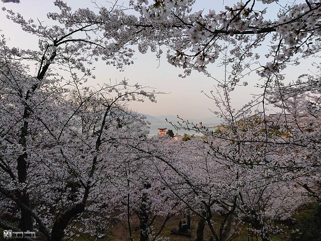 旅行若是一幅掌中的風景 | Sony Xperia XZ2 | 76