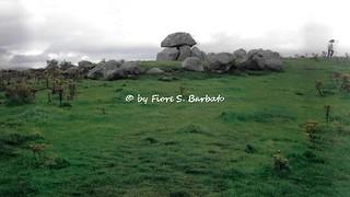 Sligo [IRL], 1997, Carrowmore Megalithic Cemetery.