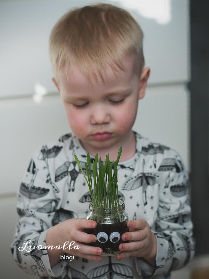 millainen_on_meidan_kolmevuotias