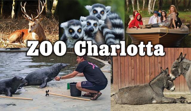 Q801440485A zoo charlotta