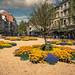 A Liège, les parterres de fleurs, c'est encore meilleur sous le soleil !