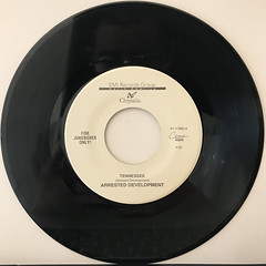 ARRESTED DEVEROPMENT:TENNESSEE(RECORD SIDE-A)