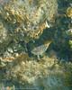 s_170908-160924-Kroatien