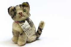 Plush Cat With Tag from Antique Mall Booth